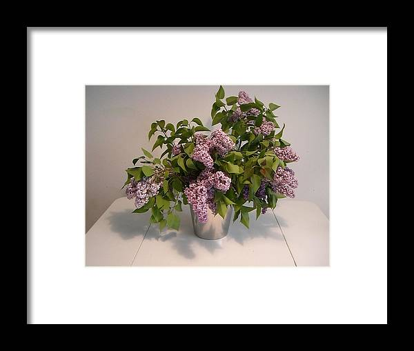 Lilacs Framed Print featuring the photograph Lilacs by Nancy Ferrier