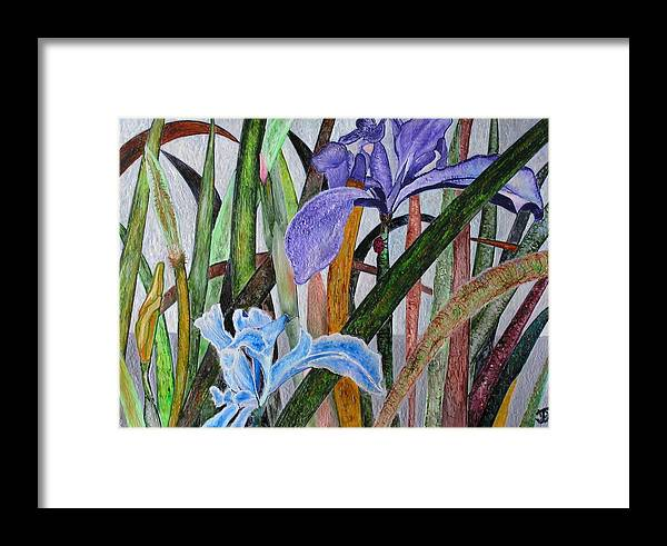 Floral Framed Print featuring the painting Lilly by John Vandebrooke
