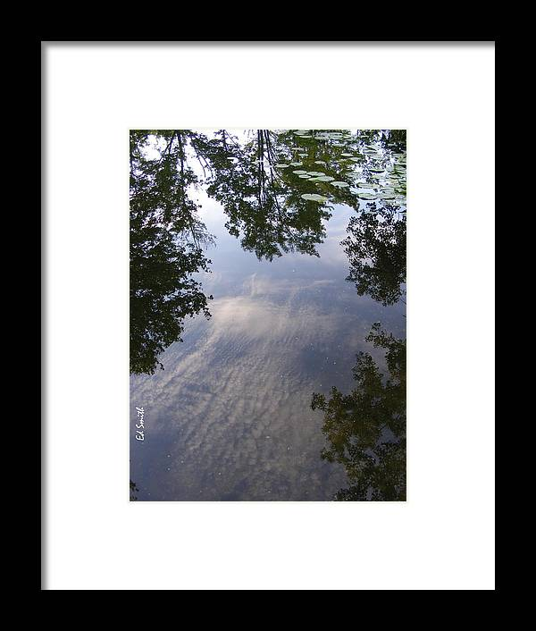 Lilly Pad Reflections Framed Print featuring the photograph Lilly Pad Reflections by Edward Smith