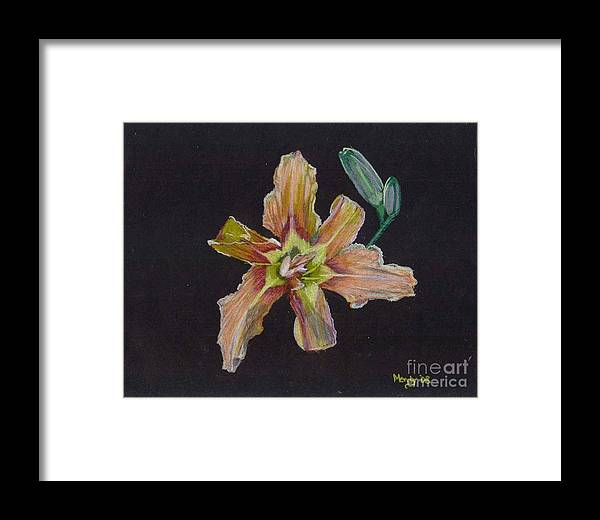 Lily Framed Print featuring the pastel Lily 2 by Mendy Pedersen