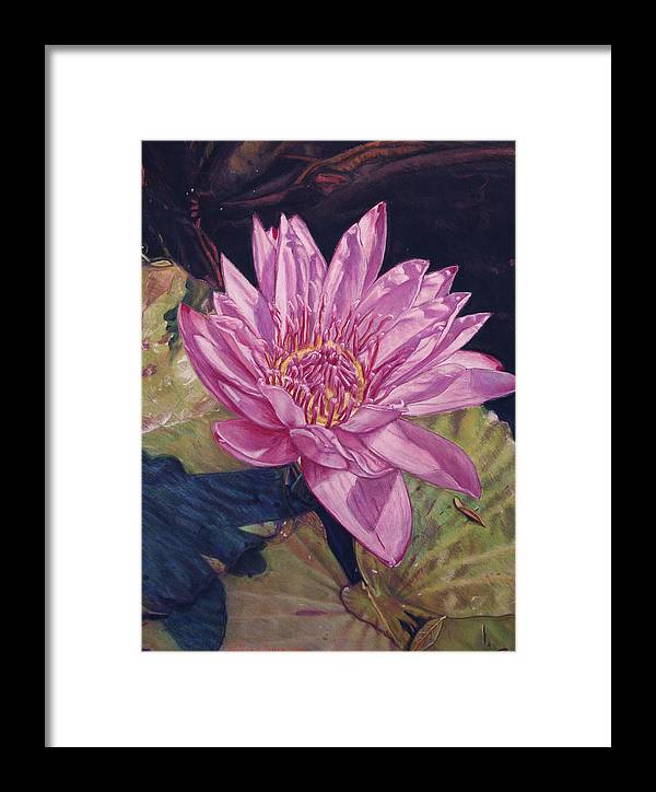 Floral Framed Print featuring the painting Lily And Her Shadow by Melissa Tobia
