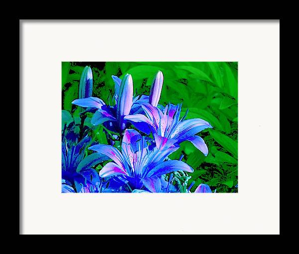 Digital Photography Framed Print featuring the photograph Lily In Green by Jim Darnall