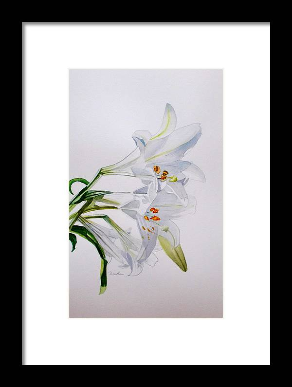 Lily. Flower Framed Print featuring the painting Lily by Nicole Curreri