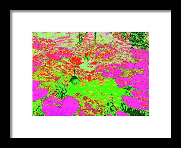Pond Framed Print featuring the photograph Lily Pads And Koi 19 by Gary Bartoloni