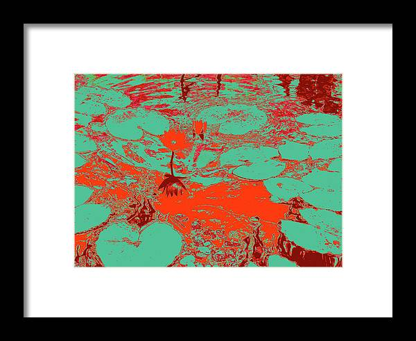 Pond Framed Print featuring the photograph Lily Pads And Koi 35 by Gary Bartoloni