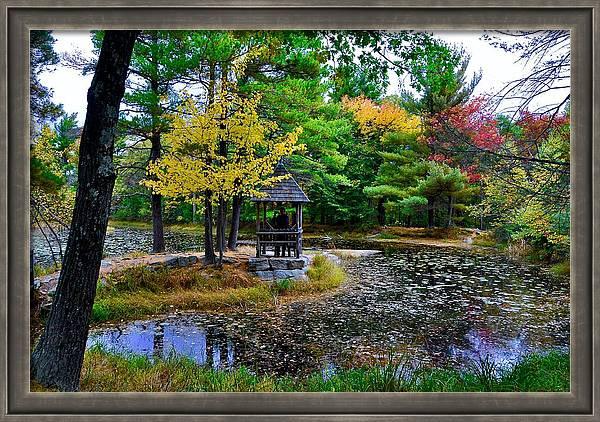 Lily Pond in Autumn by Cornelia DeDona