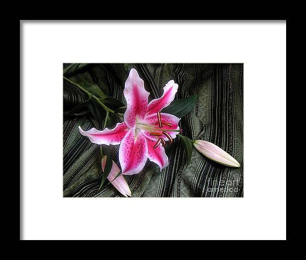 Nature Framed Print featuring the photograph Lily Stem On Green Brocade by Lucyna A M Green