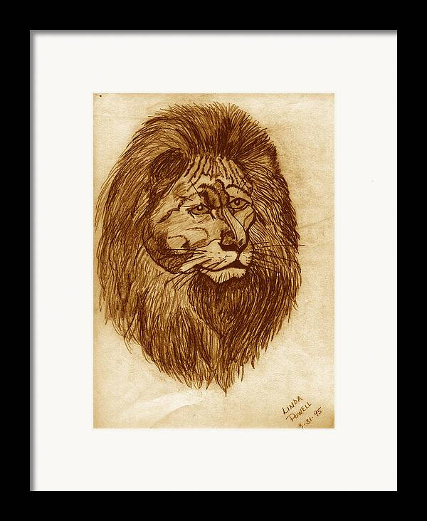 Drawing Framed Print featuring the digital art Lion by Linda Powell