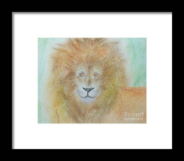 Lion Framed Print featuring the drawing Lion by Sandra Dorton