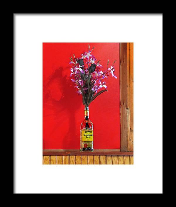 Liquor Bottle Vase 2 Framed Print By Nina Bradica