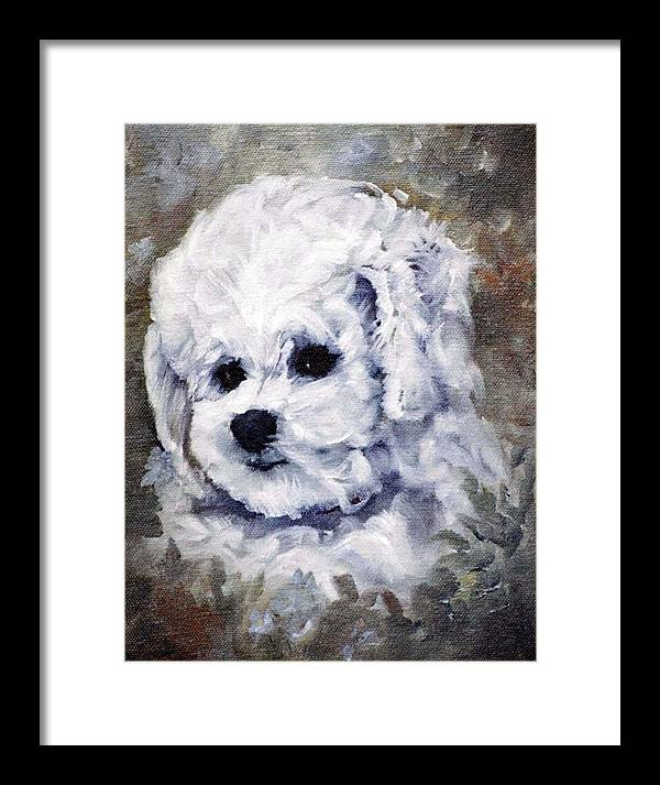 Animal Framed Print featuring the painting Little Bichon by Jimmie Trotter