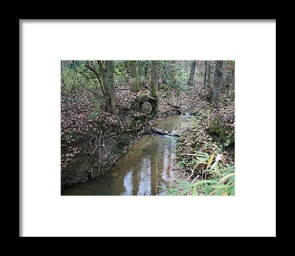 Creek Framed Print featuring the photograph Little Creek by Ryan Johnson