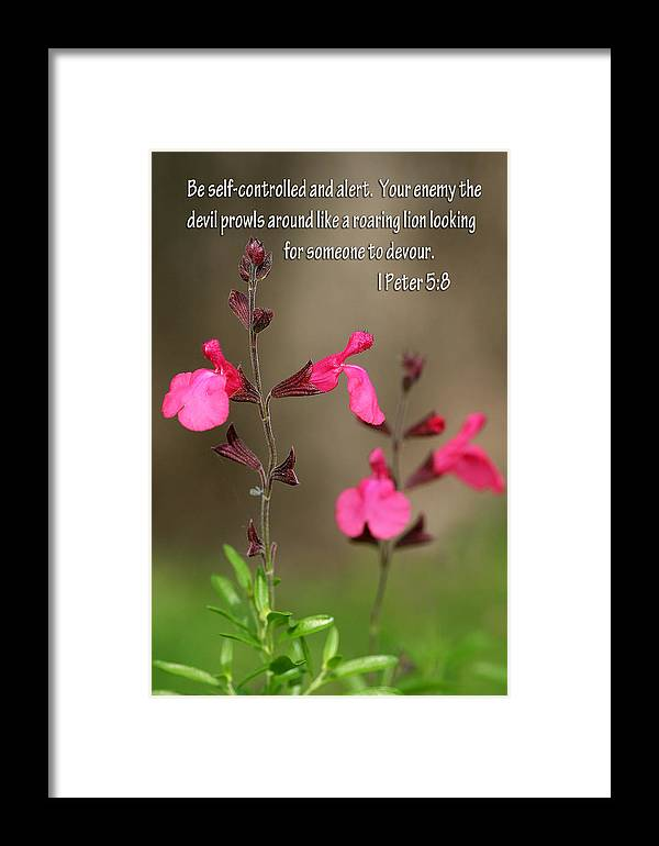 Scripture Framed Print featuring the photograph Little Pink Wildflowers With Scripture by Linda Phelps