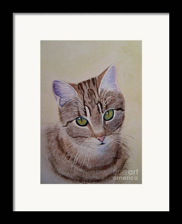 Animal Framed Print featuring the painting Little Zeke Stray Cat Series One by Teresa Boston