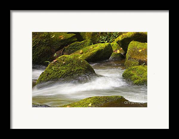 Living Framed Print featuring the photograph Living Waters by Neil Doren
