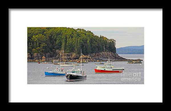 Lobster Boats Framed Print featuring the photograph Lobster Boats In Bar Harbor by Jack Schultz
