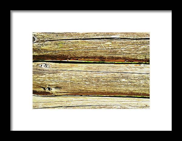 Log Framed Print featuring the photograph Log Files by HazelPhoto
