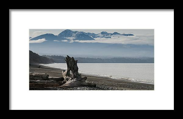 Landscape Framed Print featuring the photograph Log Under Clouds by Chad Davis