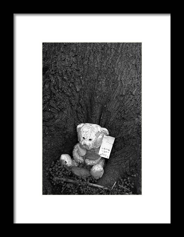 Photographer Framed Print featuring the photograph Lone Bear by Jez C Self