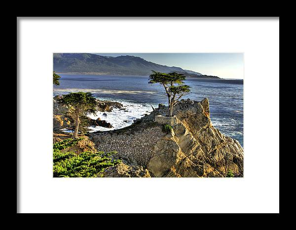Pebble Beach Framed Print featuring the photograph Lone Cypress by Paul Owen