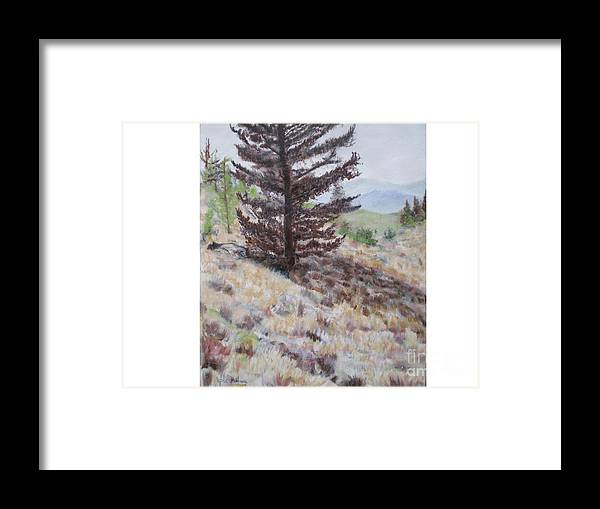 Bear Tree Framed Print featuring the painting Lone Mountain Tree by Hal Newhouser