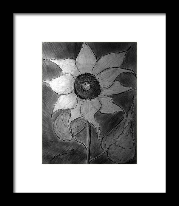 Lone Sunflower Iv Framed Print featuring the drawing Lone Sunflower Iv by Jose A Gonzalez Jr