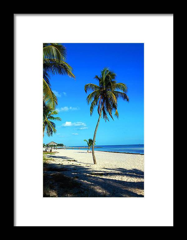 Palm Tree Framed Print featuring the photograph Lonely Palm by Susanne Van Hulst