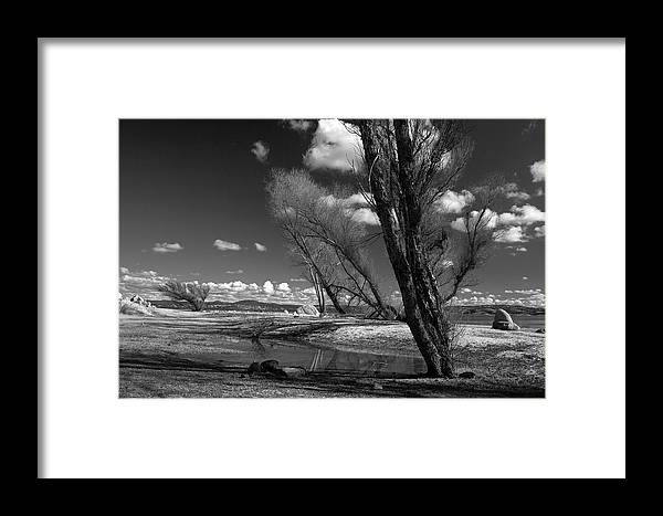 Folsom Framed Print featuring the photograph Loner by Dave Perks