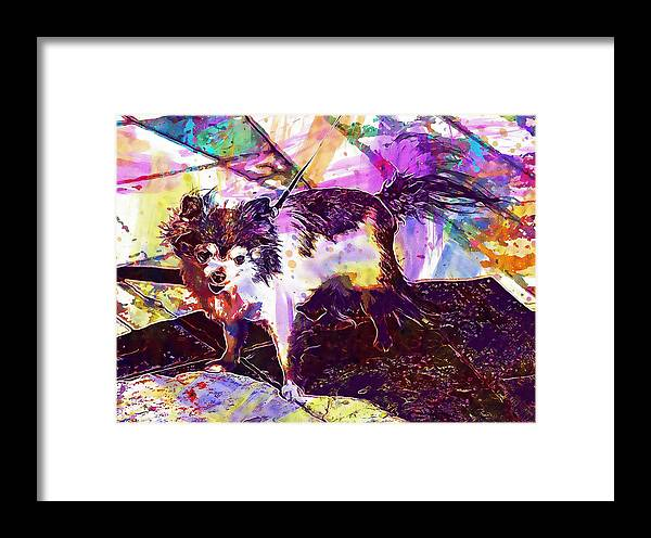 Long Framed Print featuring the digital art Long Haired Chihuahua Dog Pet by PixBreak Art