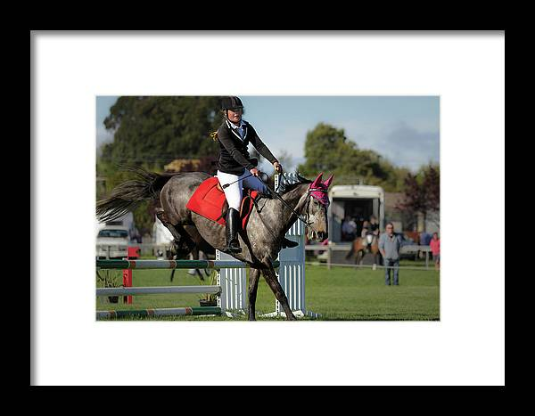 Horse 8 Framed Print featuring the photograph Longford 46 by Wild Artistic