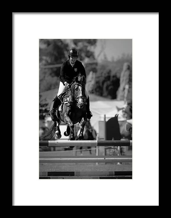 Horse 28 Framed Print featuring the photograph Longford 92 by Wild Artistic