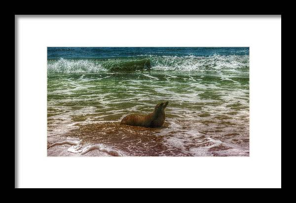 Digital Framed Print featuring the digital art Longing For Sea by Diane M Beauton