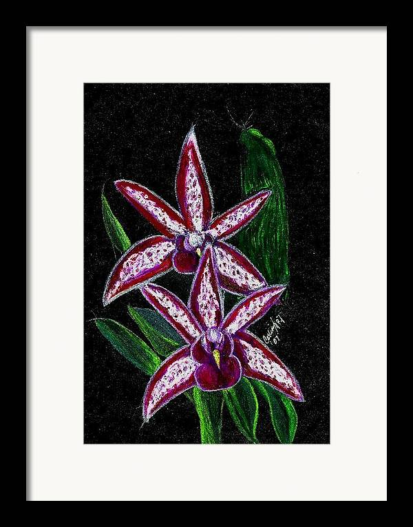 Flower Orchid Floral Reddish Purplish Framed Print featuring the print Look At Me Against The Twinkling Sky by Carliss Mora