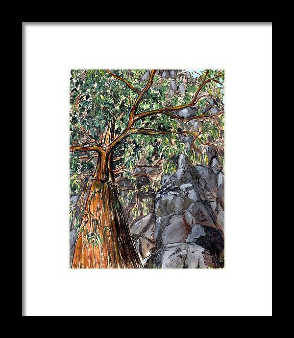 Trees Rock Steep Hill Tasmania Framed Print featuring the painting Look Up by Bethwyn Mills