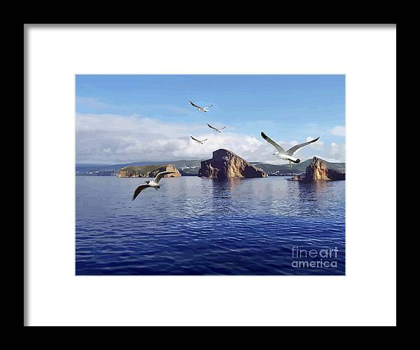 Sea Birds Framed Print featuring the mixed media Looking For Breakfast by Clive Littin