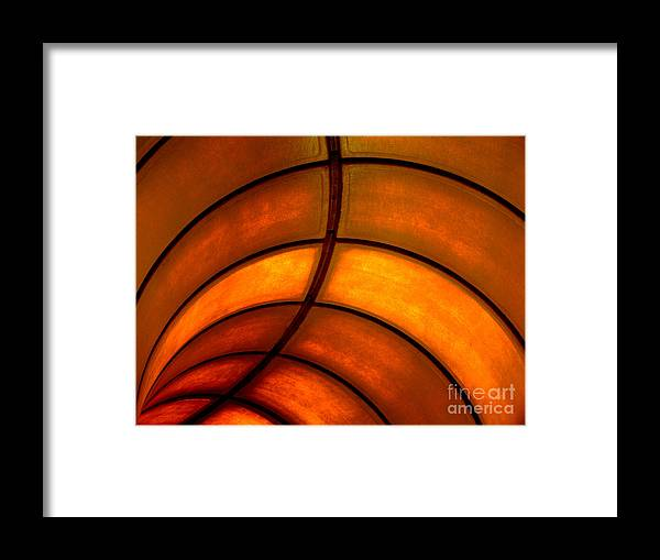 Abstract Framed Print featuring the photograph Looking Up by Elizabeth McPhee