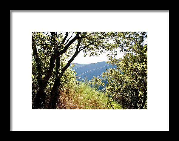 La Muse Framed Print featuring the photograph Lookout by Margaret Fronimos
