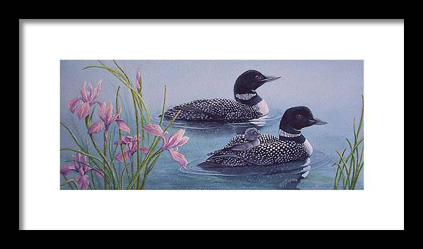 Wildlife Framed Print featuring the painting Loon Family by Cherry Woodbury