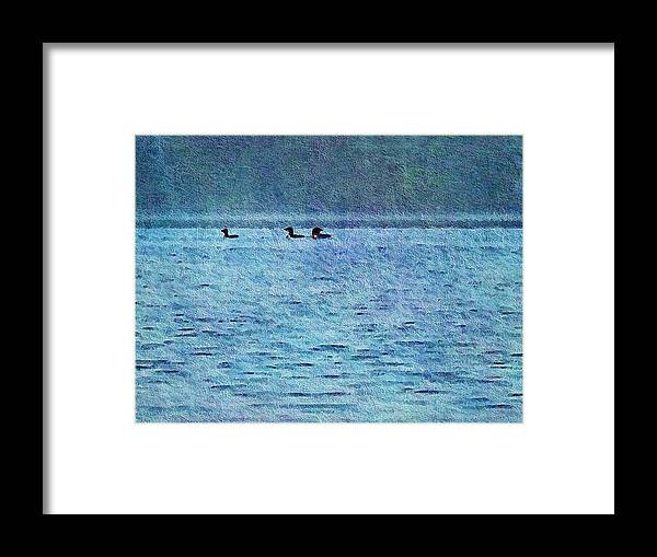 Olson Framed Print featuring the photograph Loons On The Lake by Joy Nichols