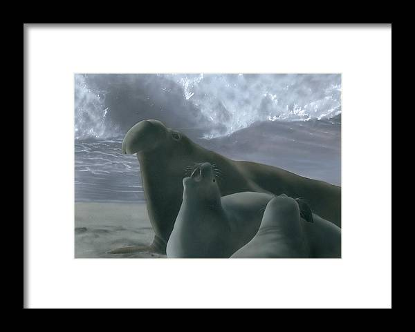 Lord Of San Simeon Framed Print featuring the painting Lord of San Simeon by Charles Parks