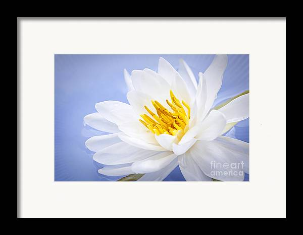 Lotus Framed Print featuring the photograph Lotus Flower by Elena Elisseeva