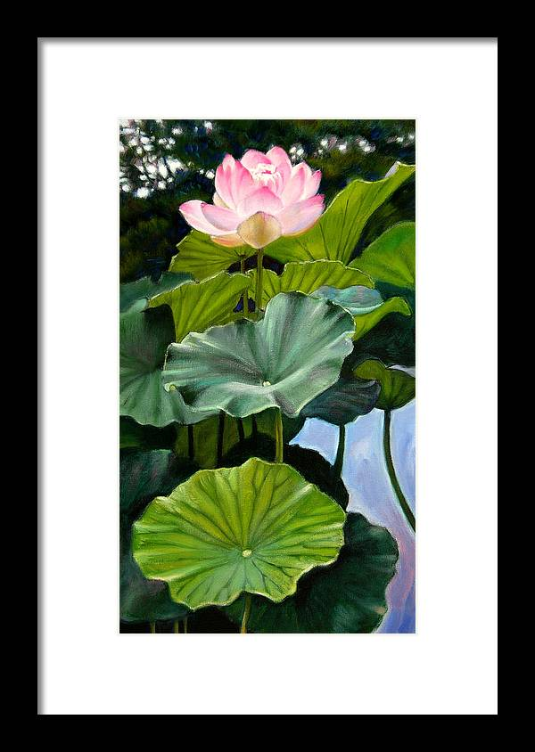 Lotus Flower Framed Print featuring the painting Lotus Rising by John Lautermilch
