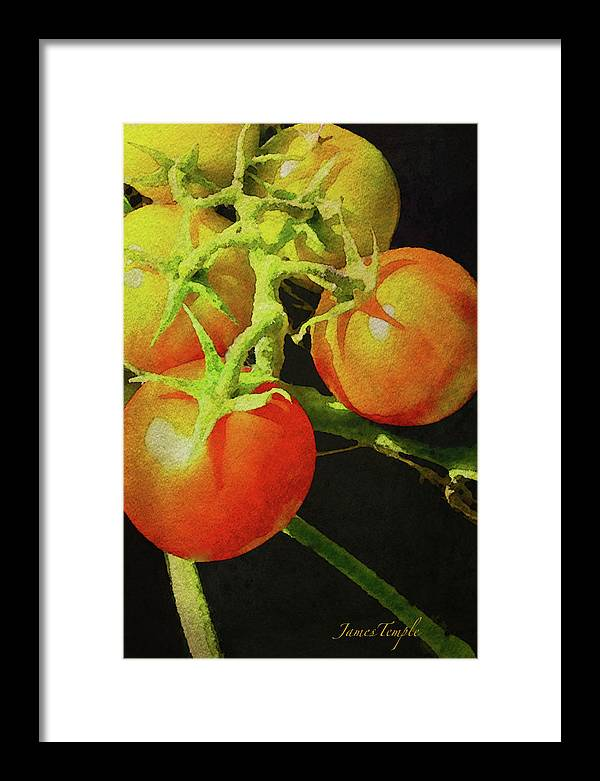 Love Apples Framed Print featuring the digital art Love Apples Digital Watercolor by James Temple