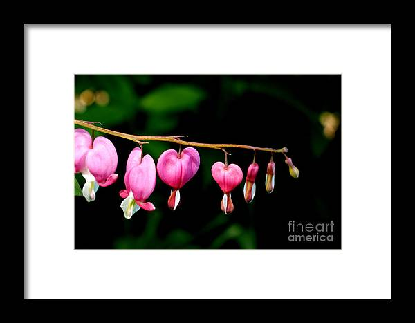 Pink Framed Print featuring the photograph Love On The Line by Valerie Fuqua