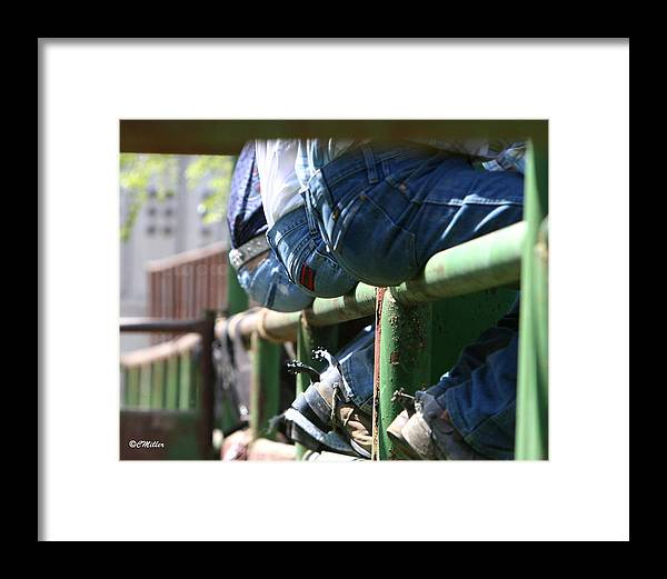 Rodeo Framed Print featuring the photograph Love Those Wrangler Butts by Carol Miller
