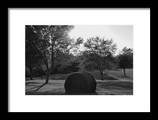 Louisiana Framed Print featuring the photograph Lowcountry Love by Heather S Huston