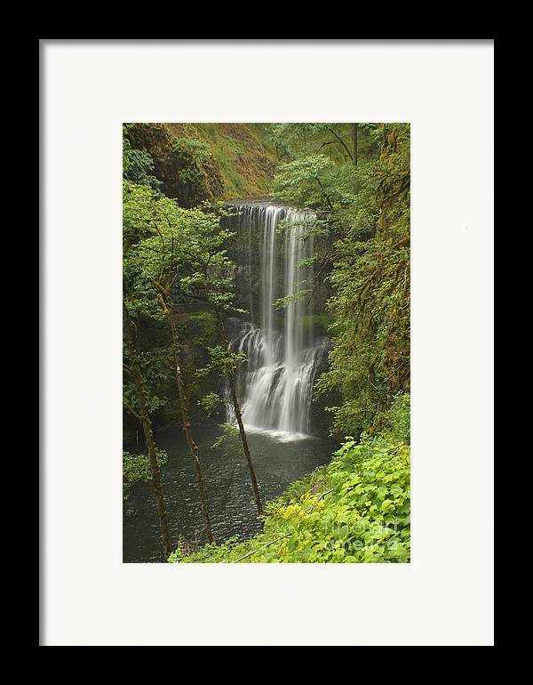 Silver Falls Framed Print featuring the photograph Lower South Falls by Idaho Scenic Images Linda Lantzy