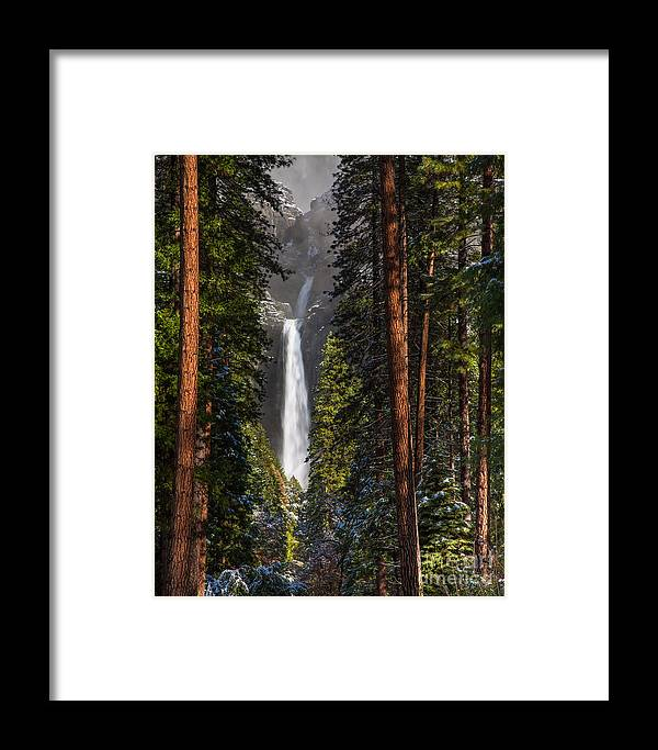 Yosemite Framed Print featuring the photograph Lower Yosemite Falls by Anthony Bonafede