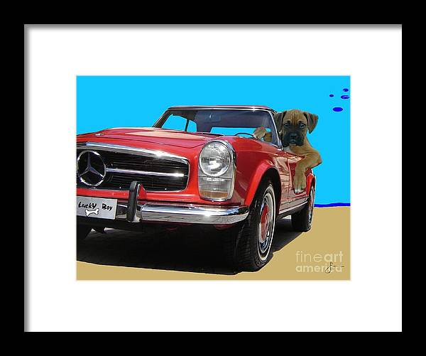 Pets Portraits. Pets Art Framed Print featuring the painting Lucky Boy by Sinisa Saratlic