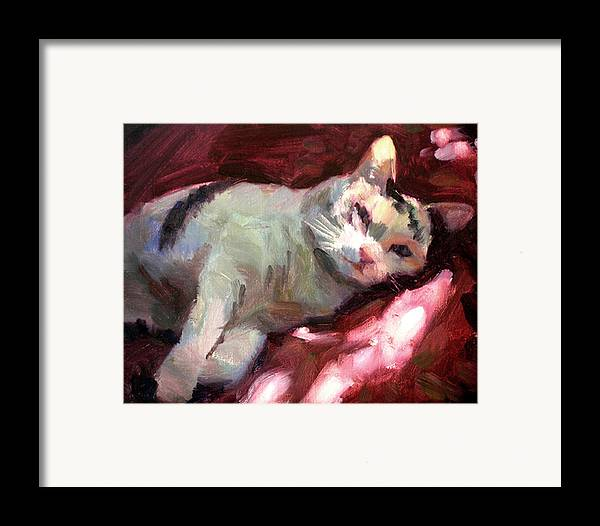 Cat Framed Print featuring the painting Luna In The Sun by Merle Keller